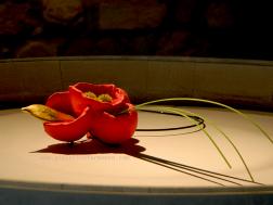 Corrado De Meo Taste me collana spilla, polistyrene, nylon, legno, foglia oro, acrilici, ossidi e argento, tecnica mista necklace brooch, polistyrene, nylon, wood, gold leave, acrilic paint, oxid, silver, mixed techniques