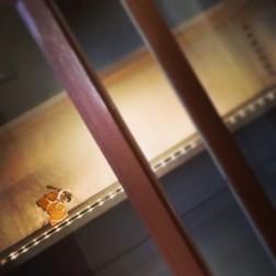 Test #workinprogress #exhibition viaggio tra i #gioiellinfermento #brooch #awinetale #showcase #enovie #igersemiliaromagna #collipiacentini #valtidonewinefest #malvasia #donnaluigia
