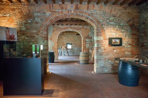 Torre Fornello, Vigna delle Arti, The Vineyard of Arts