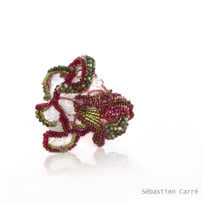 "Sébastién Carré, ""Several scales of grape"",ring   2015"